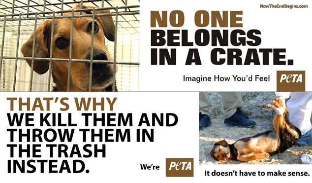 peta-kills-animals-slaughters-kittens-dogs