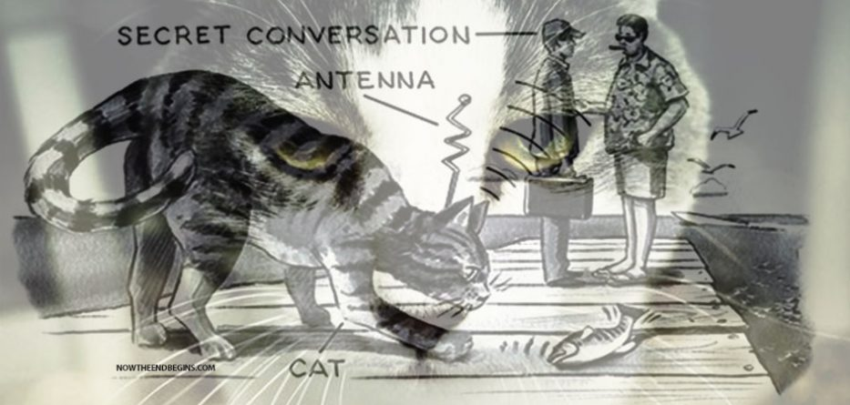 operation-acoustic-kitty-cia-wikileaks-spy-russians