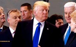 president-trump-nato-shove-may-2017-nteb