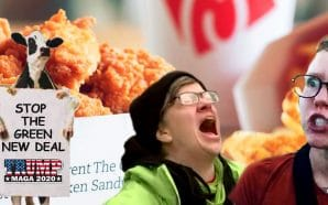 after-relentless-push-by-liberals-to-shut-down-chick-fil-a-to-become-third-largest-restaurant-america-waffle-fries-eat-mor-chikin