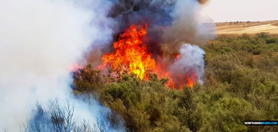 Gaza incendiary balloons spark dozens of fires in southern Israel