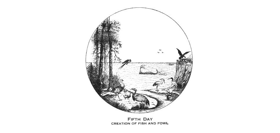 Larkin Charts Fifth Day Creation of the Fish and Fowl