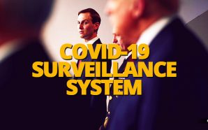 White House senior adviser Jared Kushner's task force has reached out to a range of health technology companies about creating a national coronavirus surveillance system