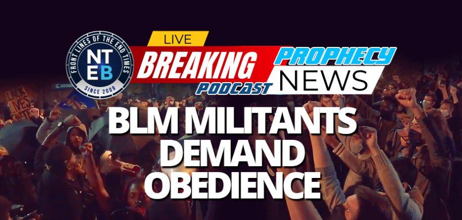 blm-militants-crash-biden-celebration-outside-white-house-demand-loyalty-to-black-lives-matter-raise-your-fist-hitler-brown-shirts