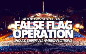 joe-biden-inauguration-day-january-20-2021-field-of-flags-false-covert-operations-america-civil-war-washington-dc