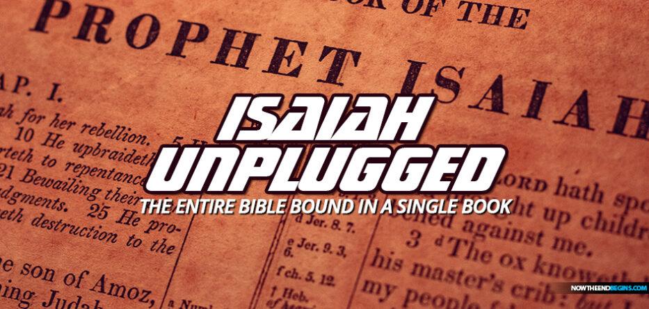 isaiah-chapter-40-first-second-advents-jesus-christ-deuteroisaiah-confounds-rabbis-bible-scholars-prophetical-fulfillment-coming-king-kingdom-nteb