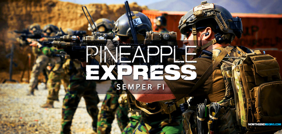 pineapple-express-special-forces-us-miitary-veterans-rescuing-americans-stranded-in-afghanistan-kabul-that-biden-abandoned-semper-fi